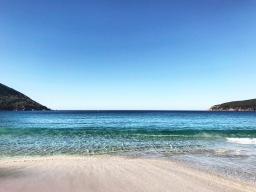 Abroad: Tasmania, Australia